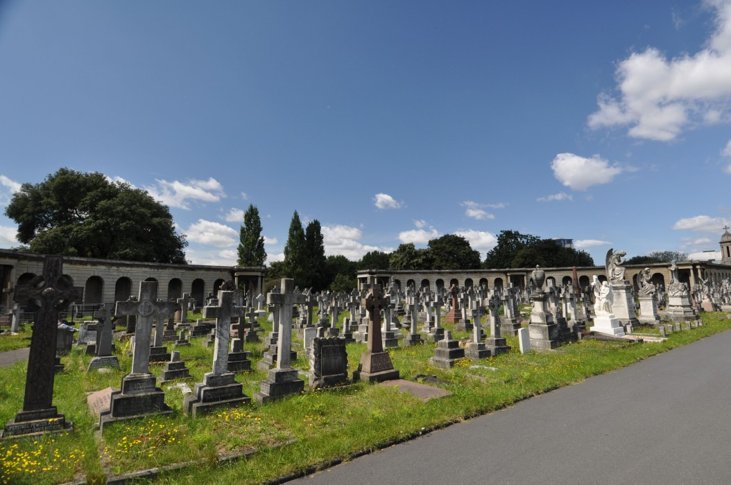 Brompton Cemetery View 11