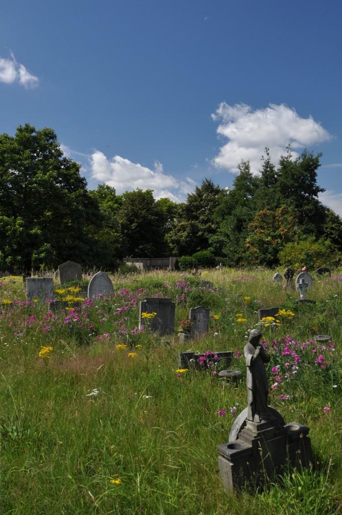 Brompton Cemetery View 2