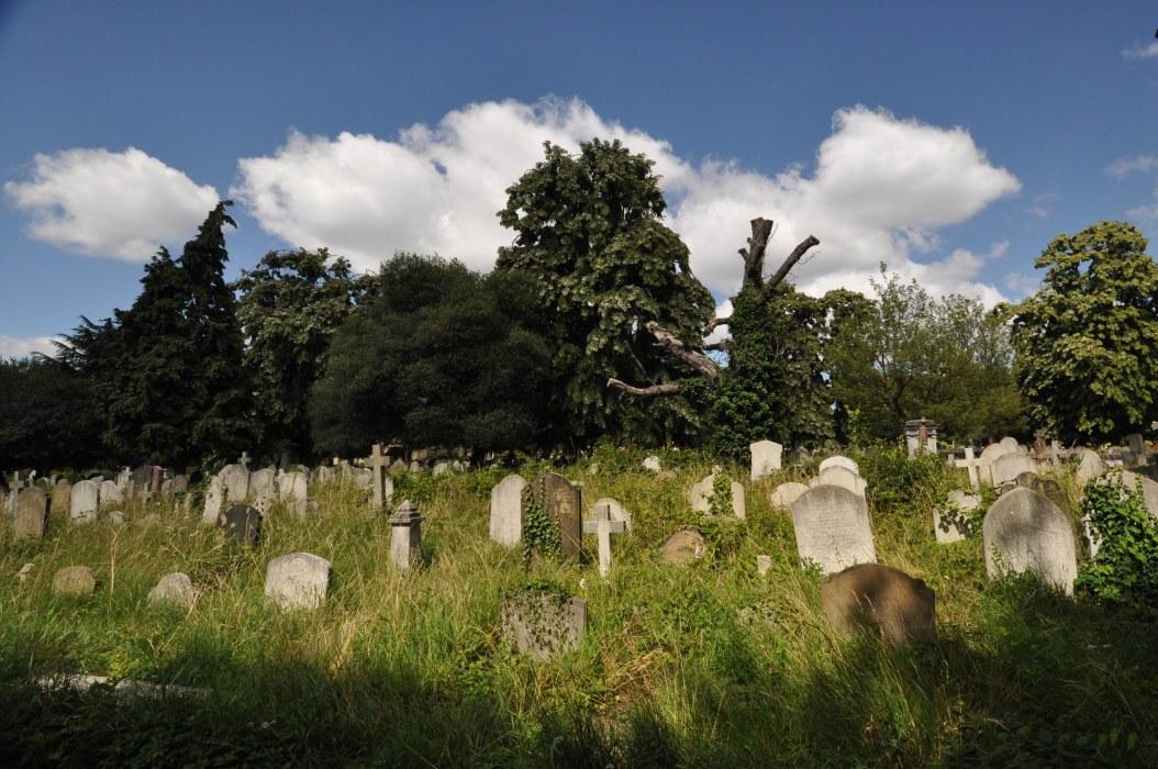 Brompton Cemetery View 7