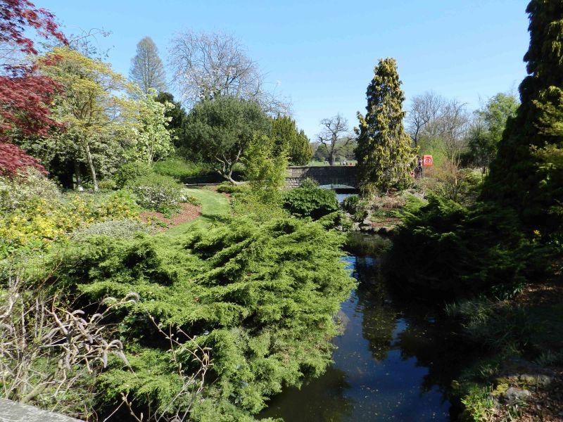 Dulwich park Lake - alternate view