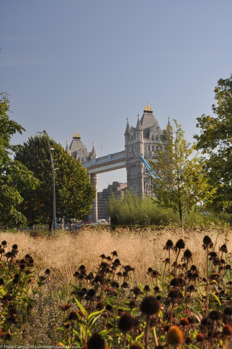 Tower Bridge from behind City Hall - Potters Fields