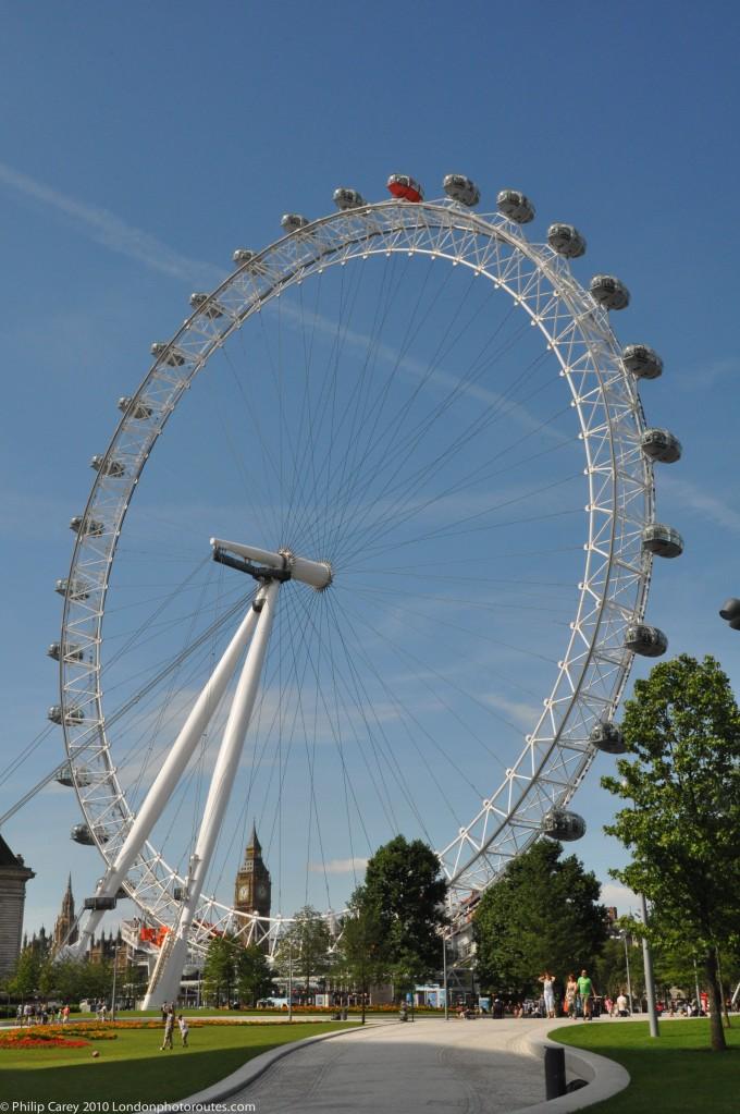 London Eye from Jubilee Gardens