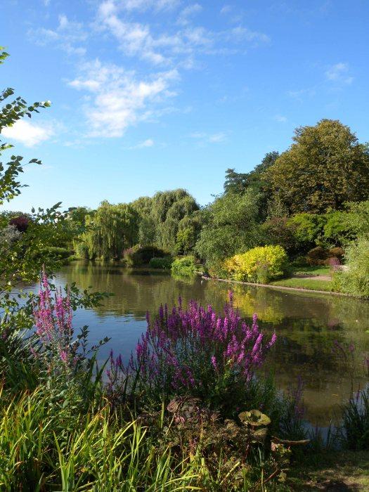 Summer Regents Park
