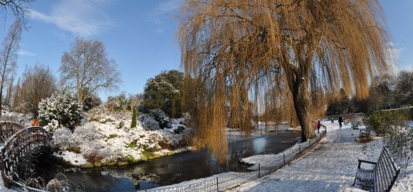 Winter - Regents Park