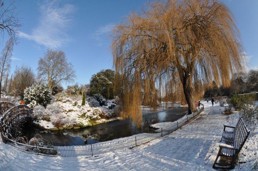 Winter - Regents Park