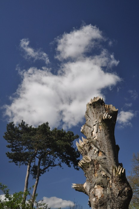 Dead tree sculpture - Kew