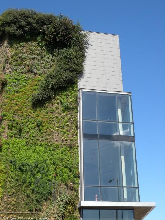 Vertical Garden on building in Orchard Way