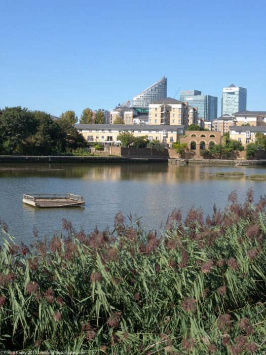 London Runs and Photo Routes - East India Dock Basin - Salt Marsh Reserve