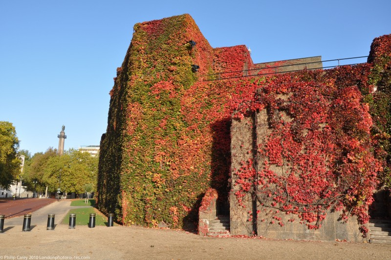 Old Admiralty Office with Virginia Creeper