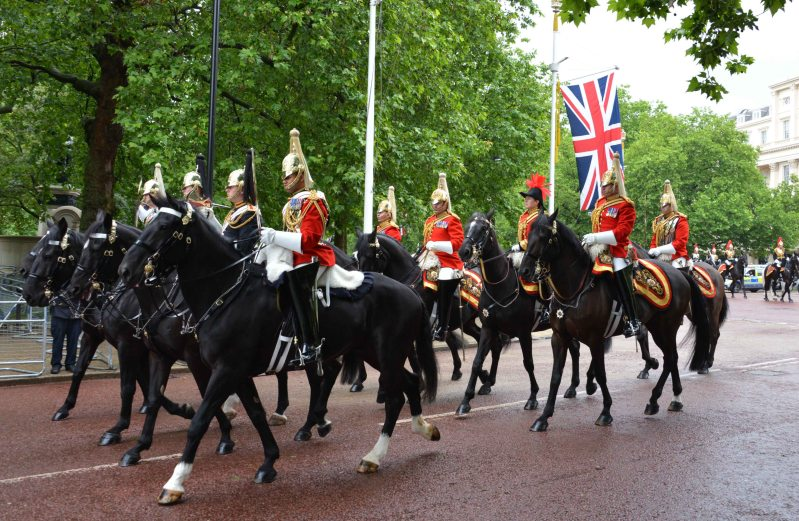 Household Calvary Standard Parade - with Veterinary officer