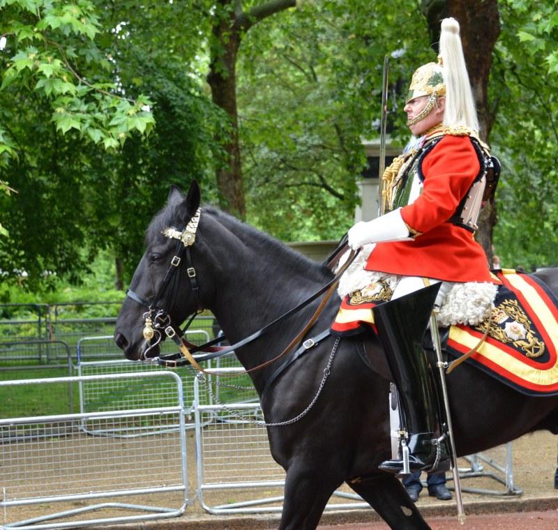 Household Calvary Standard Parade - Lieutenant-Colonel Life Guards