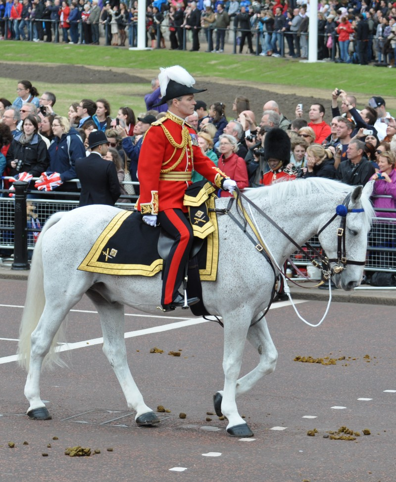 Major General EA Smyth-Osbourne commanding the Household division