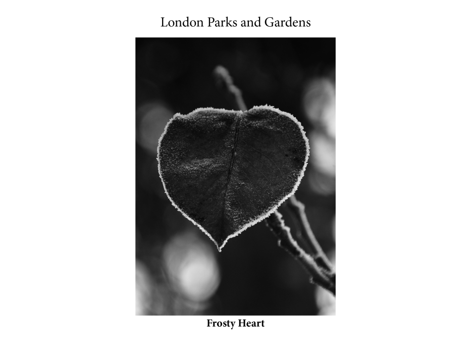 London Runs and Photo Routes
